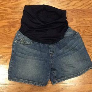 Liz Lange Maternity Shorts